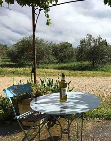 domaine oliversion accueil vue champ