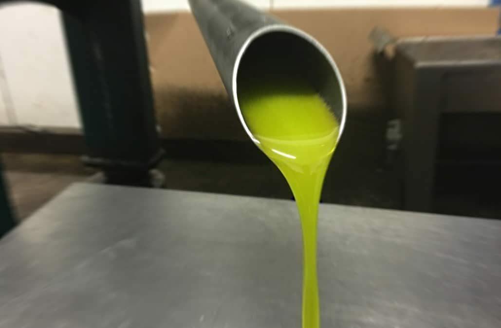 L'huile nouvelle est désormais disponible !